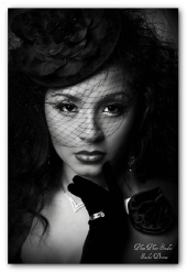 Sasha Devine - Birdcage Veil