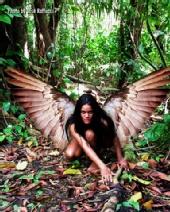 JOSE RAFFUCCI - dark angel