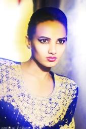 mihai crisan - Ashnavi