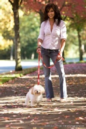 Sarah - Walking Bailey
