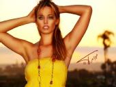 Ang Ellie - Sunset Angel