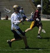 Strandgammier - Lacrosse