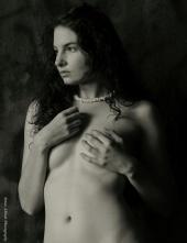 Brian Abbott Photography