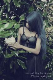 Black_Silk