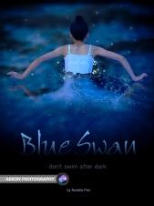 Aeron Nersoya - Blue Swan - Book Cover